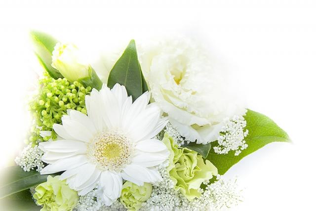 茨城県 56歳 再々婚 女性